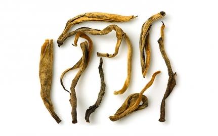 Yunnan Golden Tips